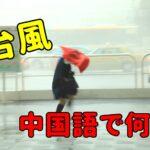 【発音付】台風は中国語で何?台湾でも今スグ使える例文5選!