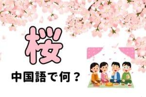 【発音付】「桜・お花見」中国語で何?今スグ使える例文5選!
